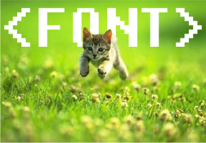 Kitten, running for <FONT>.